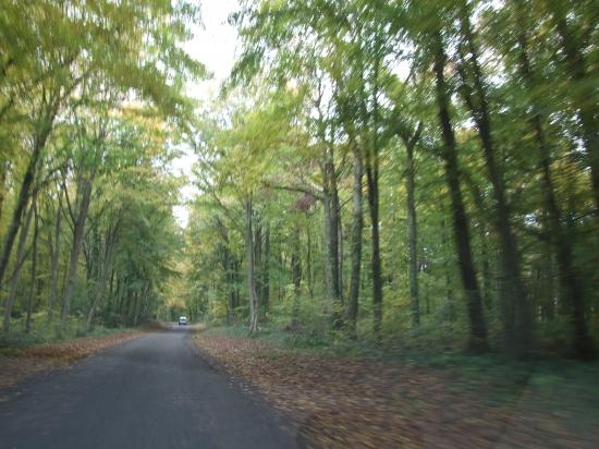 Vers Bois les Pargny 02
